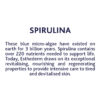 ESTHEDERM product photo, Intensive Spirulina Serum 30ml, brighten visibly tired or lackluster skin, skin energy, revitalized